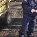 10 в ареста от горското във Велико Търново, разследва се сеч