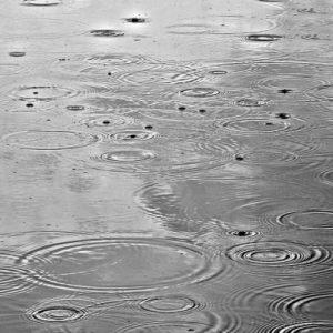 Облаци, дъжд, след обяд слънцето ще се покаже