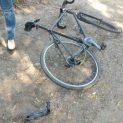 Шофьор блъсна велосипедист край ст.