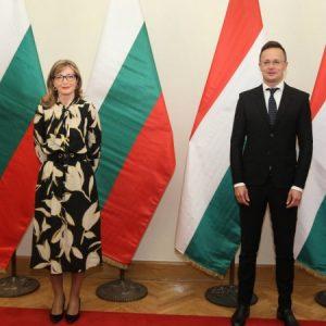 Захариева обсъди темите енергетика и икономика с унгарския си колега